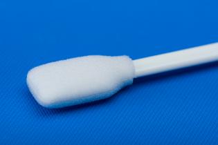 Foam Swab Wide-Paddle Tip Up Close